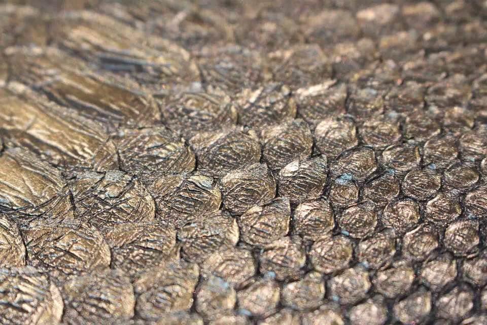 DIOR迪奥黑色戴妃包 非洲大蟒蛇皮 金属字母配饰