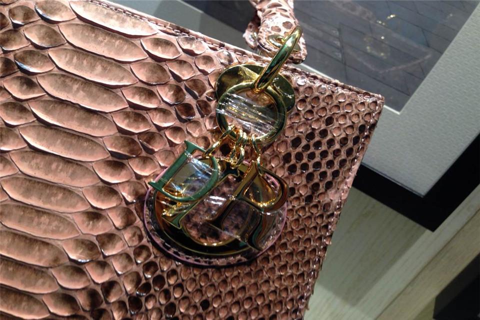 DIOR迪奥铁锈色金扣戴妃包 蟒蛇皮内配原版羊皮 金属字母配饰
