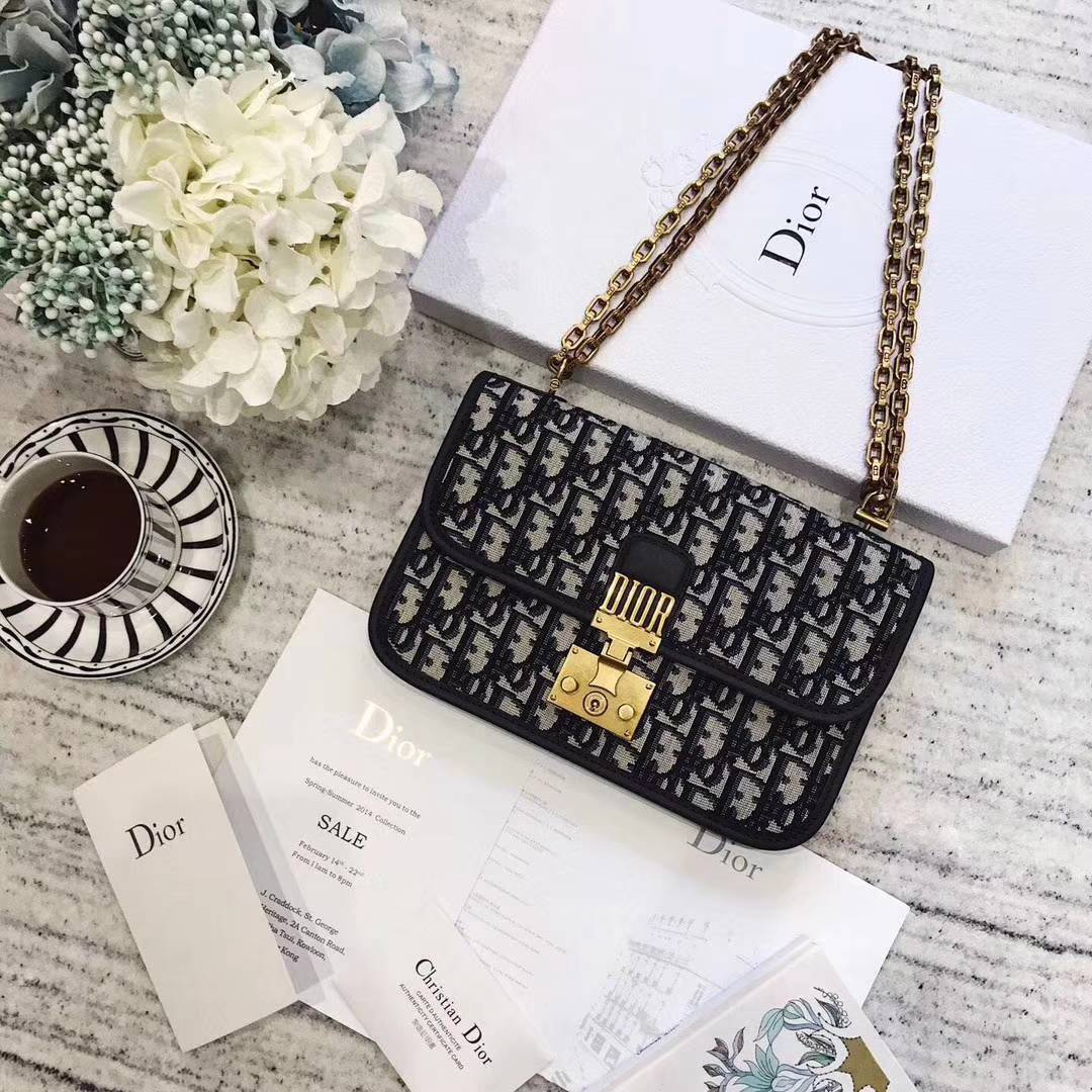 Dior2018新款包包 迪奥经典Logo帆布包链条单肩女包斜挎包21cm