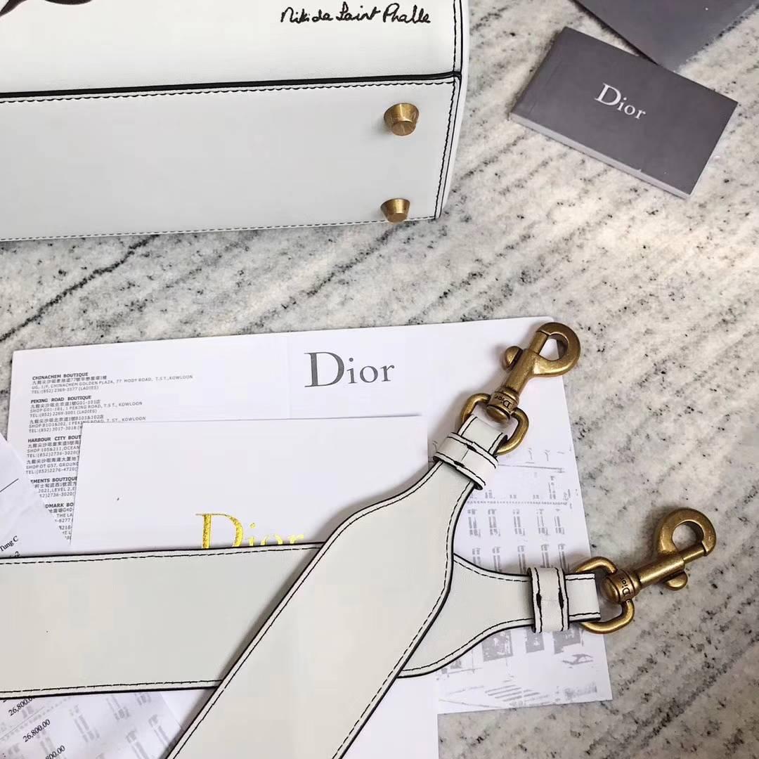 迪奥新款包包 Lady Dior Niki de saint phalle 合作款恐龙彩绘戴妃包大号24cm