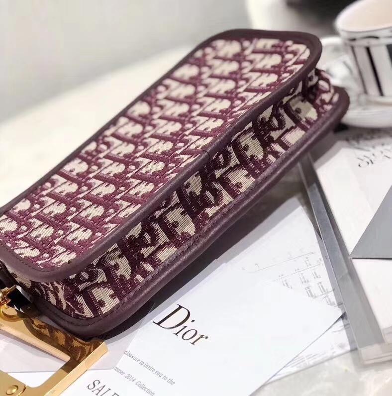 Dior包包价格 迪奥秋冬新款经典印花帆布相机包手拎包19CM 酒红色